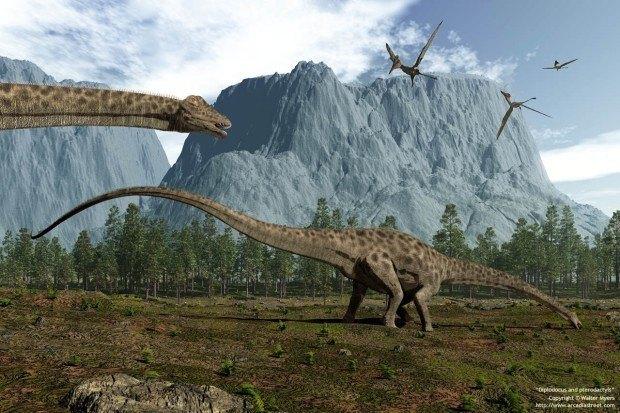 sauropodes