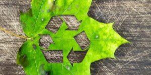 reciclar é importante