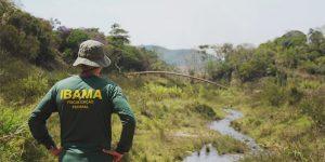 ibama funções fiscalização ambiental