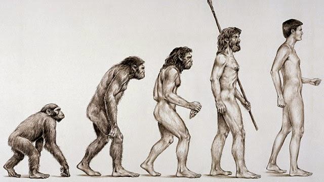 Naturalismo: contexto histórico, principais autores e obras