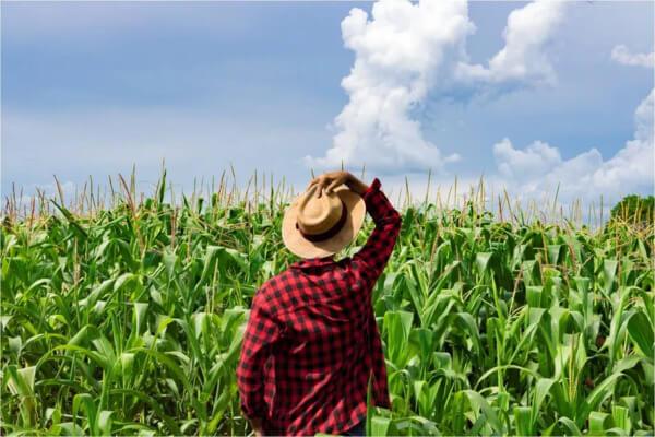 agraria reforma