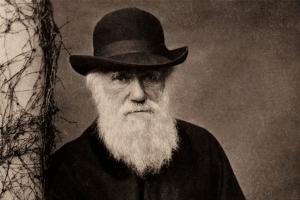 darwinismo o que é