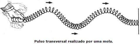 onda mecânica transversal