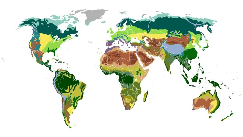 biomas mapa
