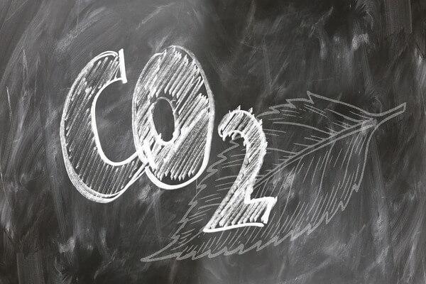 Ciclo do carbono2