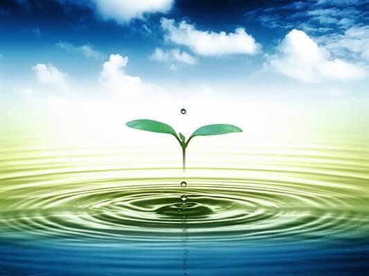 Importância da água2