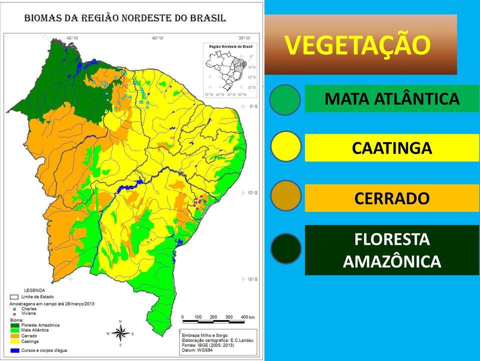 Mapa de Vegetação Região Nordeste Brasil