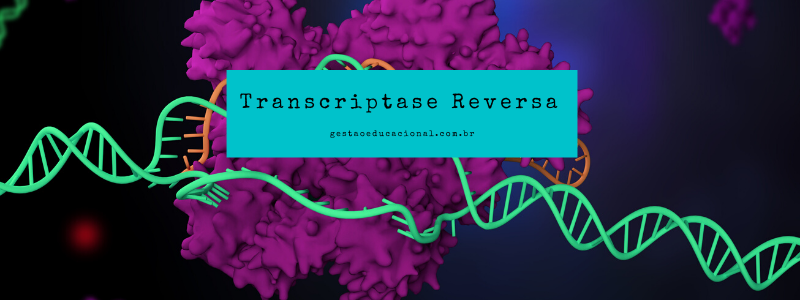 O que é transcriptase reversa?